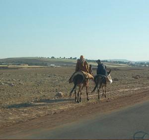 de Marrakech-Essaouira-um-s